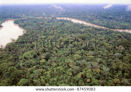 Primary rainforest viewed from the air with the Rio Aguarico in the background, Ecuador