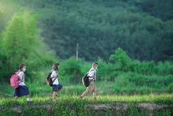 Primary school students group one Asians living in rural areas and rural schools of Thailand Elementary school children are traveling by foot to a school where there is rice field and mountain.