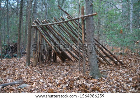 Primitive Lean to Survival Shelter in the forest.  Makeshift campsite in the wilderness. Essential bushcraft skill  #1564986259