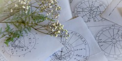 Printed astrology natal charts with small yellow flowers and fragile green plant branches on a table, annual and New Year horoscope background