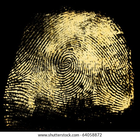 Printout of human fingerprint with unique detail