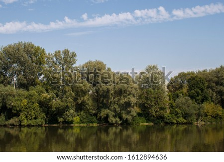 Pristine riverbank, trees and their reflection. River Tisza in Hungary, Europe in the famous Tokaj wine region. Tranquil Hungarian riverscape, ecosystem and healthy environment concept and background.