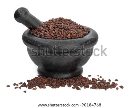 Privet fruit herb used in traditional chinese herbal medicine in a black granite mortar with pestle isolated over white background. Nu zen  zi. - stock photo