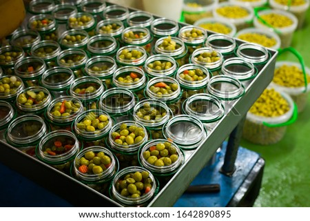 Process of filling of glass jars with pickled olives in packaging shop at artisanal food producing factory