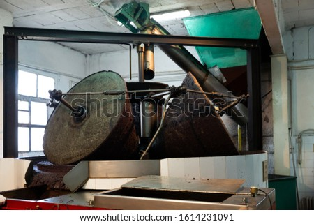 Process of grinding olives in crusher machine in olive oil producing factory
