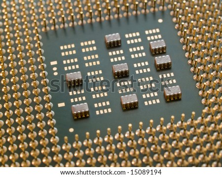 processor with golden pins closeup. shallow dof