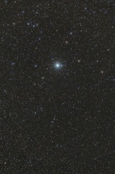 Procyon star in the constellation Canis Minor in the dark sky full of stars