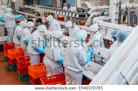 Production line in the food factory.Factory for the production of food from meat.Industrial equipment at a meat factory.Automated production line in modern food factory.People working.