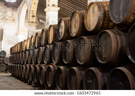 Production of fortified jerez, xeres, sherry wines in old dark oak barrels in sherry triangle, Jerez la Frontera, El Puerto Santa Maria and Sanlucar Barrameda Andalusia, Spain Foto stock ©