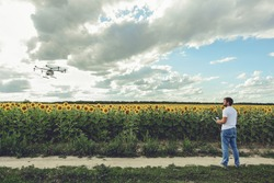 Professional agriculture drone flying with blue sky background controlled by young man. Octocopter flights outdoors, sunflower field.