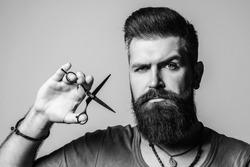 Professional barber man with scissors. Brutal bearded guy. Stylish hairdresser in barber shop. Beard styling and cut. Advertising and barber shop concept. Barber scissors.
