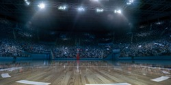 Professional basketball arena with basketball hoop in 3D.