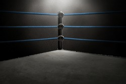 Professional boxing ring