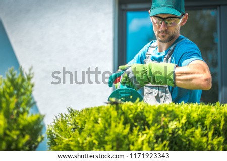 Professional Caucasian Gardener in His 30s Trimming Shrub Using Electric Trimmer.