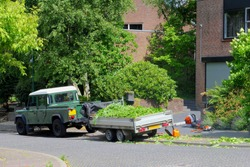 Professional gardeners transport garden waste in pickup trailer to garbage dump after trimming trees, Netherlands