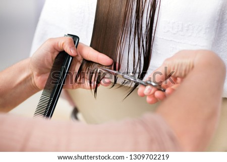 Professional hairstylist cutting hair ends of wet long brown hair with scissors and hairbrush in hands