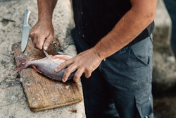 Professional island fisherman preparing / cleaning gilthead sea bream.Fishing for living.Local fish market.Fresh seafood.Expensive catch.Healthy mediterranean diet.Sustainable fishing.Farming