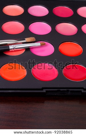 professional  lip gloss make-up multicolor palette with brushes