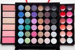 Professional makeup colorful palette