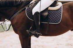Professional male equestrian rider saddle up horse for dressage on training or competition - Unrecognizable closeup, focus on boots in stirrup. Concept of animal loving and having hobby