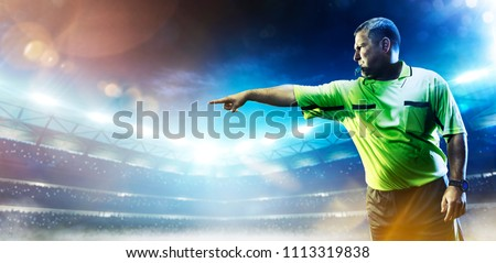 Professional soccer referee on the grand arena