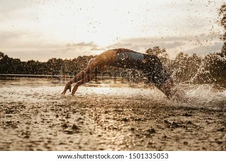 Professional Triathlete Ironman Athlete Triathlon Swim Bike Run Tri Endurance Sport