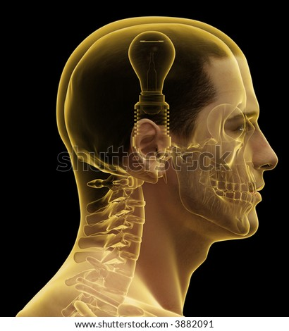 Profile of a male human head & skull with light bulb.