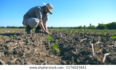 Profile of young male farmer caring about small green sprouts of sunflower at field during drought. Blue sky at background. Concept of agricultural business. Low angle view Close up