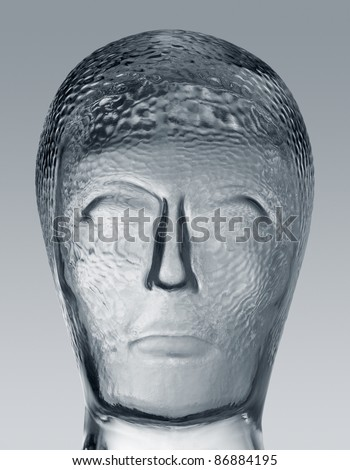 """profile shot of a generic human """"dummy"""" head made of glass in gradient  grey back, with clipping path"""