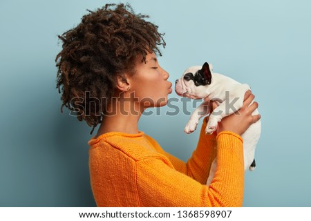 Profile shot of pleased dark skinned female kisses small french bulldog, expresses love to favourite pet, wears casual orange jumper, poses against blue background. Little dog in hands of master