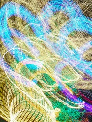 Profusion of light trails in an ornamental garden with festive holiday illumination at night. Long exposure with motion blur. Light painting.