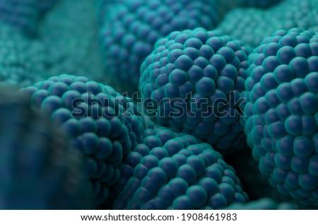 Prostate cancer cells 3d illustration Close-up Foto stock ©