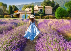 Provence, France. Beautiful view on blooming Lavender fields in Provence, France. National park Luberon. Lovely young Caucasian woman enjoying the lavender meadow walking to traditional French house.