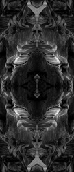 Psychedelic Abstract Faces, made with Sea Rocks, Symmetrical Kaleidoscope Mirror, Abstract Background.