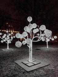 Public Christmas lighting. Light performance in the public park. Street adornment.