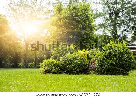 public park and garden in the...