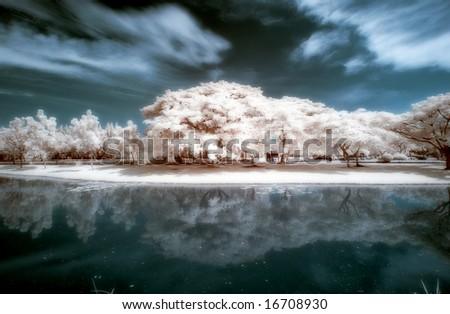 Public Park At Bangkok ,Thailand taken in Near Infrared - stock photo