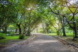 Public park way