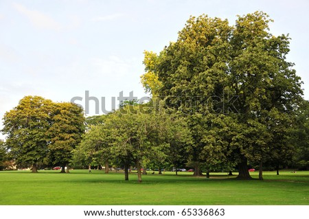 Public Park with Mature Trees and Lots of Green Open Space