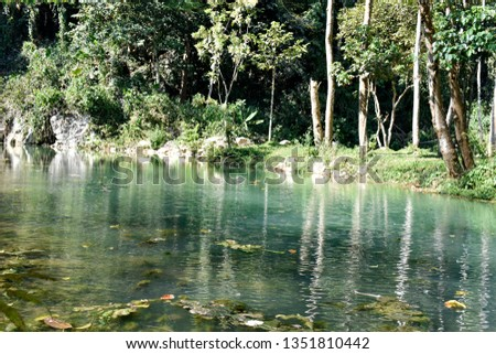 Public pool is green, with trees, ornamental plants and pebbles and mountainous soils surrounding the pool, a natural forest in northern Thailand. #1351810442