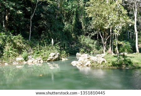 Public pool is green, with trees, ornamental plants and pebbles and mountainous soils surrounding the pool, a natural forest in northern Thailand. #1351810445