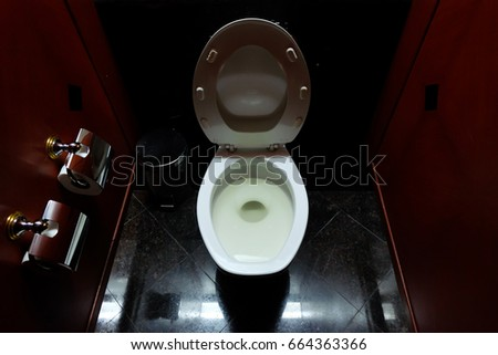 Public toilet with toilet paper and bin. #664363366