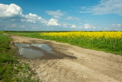Puddle on a dirt road beside a yellow rape field and clouds on the blue sky, Czulczyce, Lubelskie, Poland