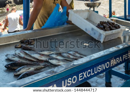 Puerto Cruz, Tenerife, Spain - July 10, 2019: Fisherman after a successful fishing, behind the counter sells his catch of fish and shellfish. Gentle warm sunny day. Old port, historical part of city.