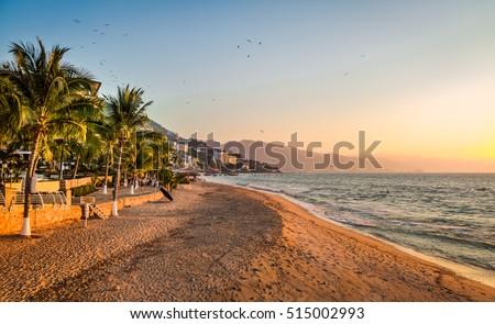 Shutterstock Puerto Vallarta sunset and palms - Puerto Vallarta, Jalisco, Mexico