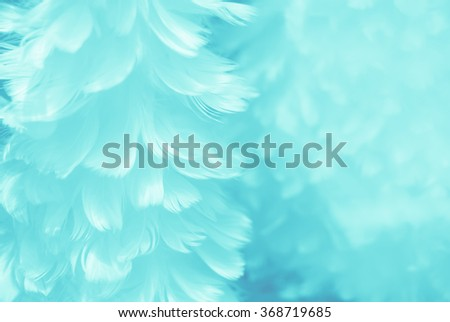 Puffy baby blue bird feather animal texture background - shallow depth of field and soft focus