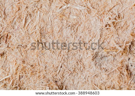 Pulp and Paper used for background.