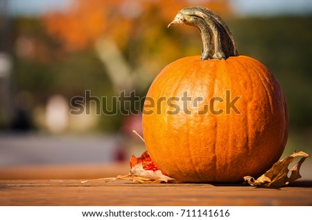 Pumpkin and autumn leaves on picnic table in the fall. Colorful autumn foliage in the background.