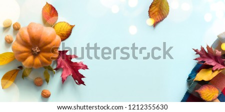 Pumpkin and autumn leaves; thanksgiving art background