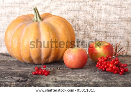 Pumpkin, apple, a guelder-rose against a sacking and wooden structure